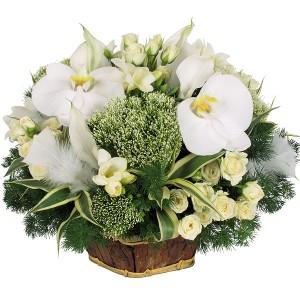 bouquet-fleur-pas-cher-1